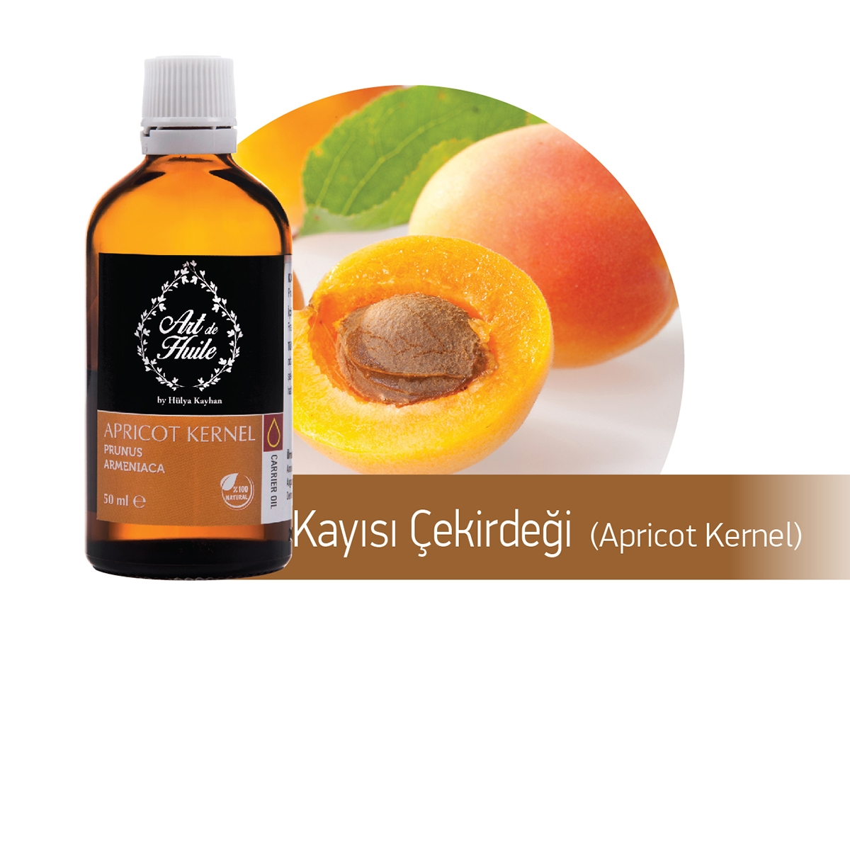 apricot-kernel